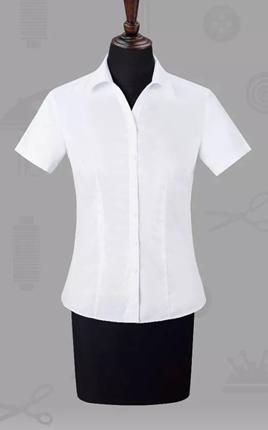高端女士短袖衬衣